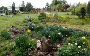 bot zahrada